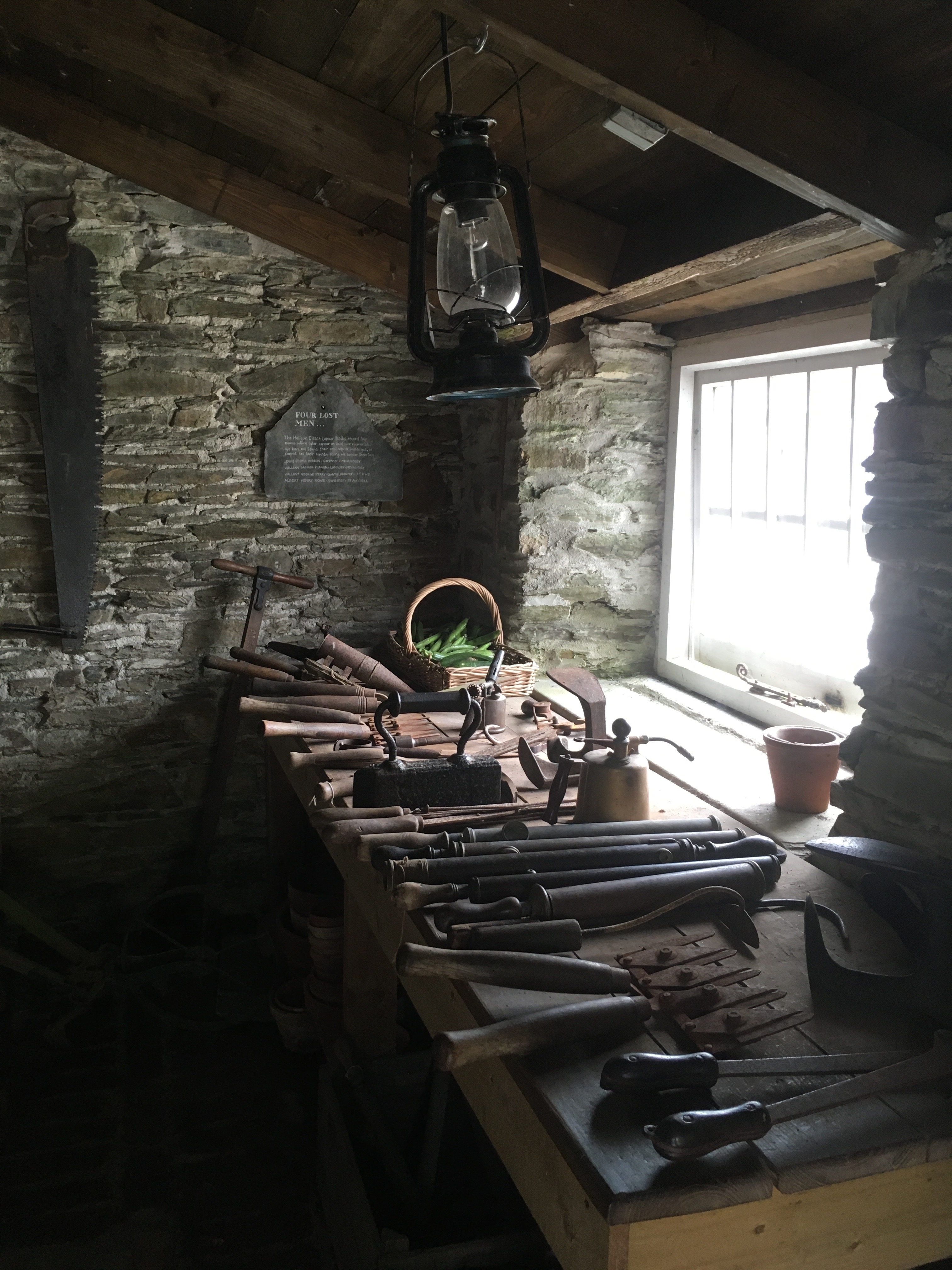 Garden shed and vintage garden tools at The Lost Gardens of Heligan, Cornwall, England